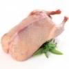 Тушки поросенка, кроликов и домашней птицы: гусей и уток в наличии и под заказ